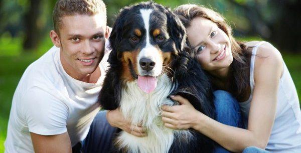 Pessoas com animais de estimação tem uma melhor vida física e mental