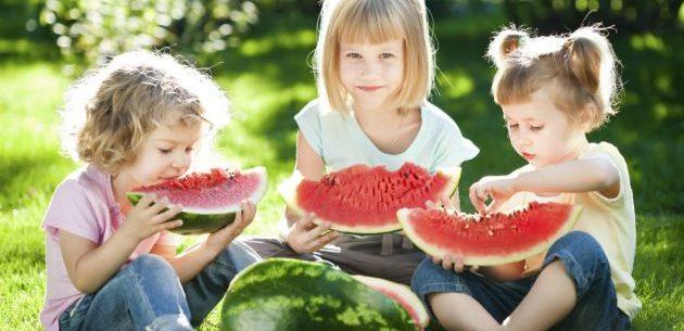 Razões para comer melancia