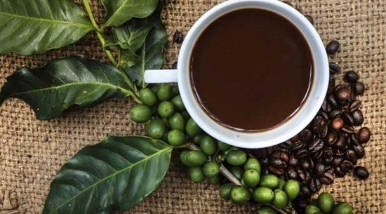 Emagreça com o café verde