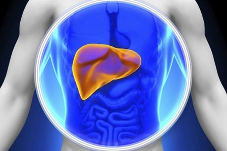 O que é fígado gorduroso e como preveni-lo