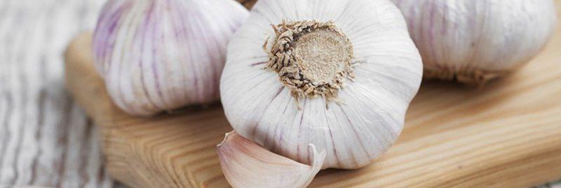 Os incríveis benefícios do alho para a saúde