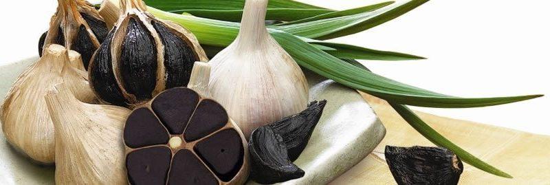 Alho negro: um alimento ainda mais poderoso que o alho comum
