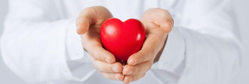 Ervas, especiarias e dicas para ter um coração mais forte