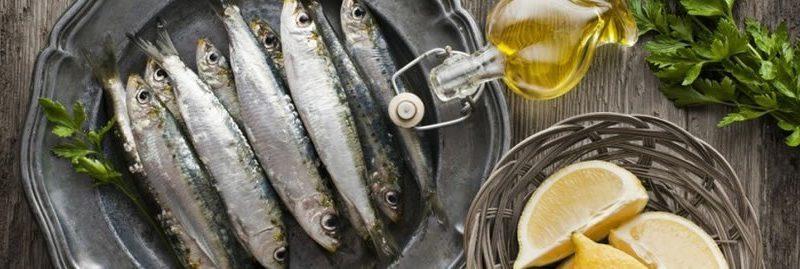 11 benefícios da anchova para a nossa saúde