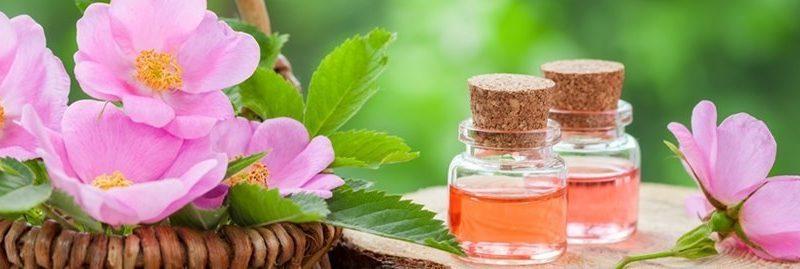 Propriedades e benefícios do óleo de rosa mosqueta