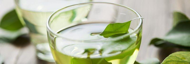 Chá desintoxicante: 5 opções para limpar o organismo