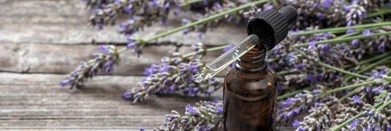 8 incríveis benefícios do óleo essencial de lavanda para a saúde