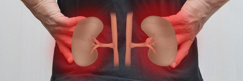 10 hábitos comuns que podem causar sérios danos a seus rins