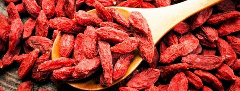Goji berry emagrece? Veja seus benefícios e como tomar suas cápsulas