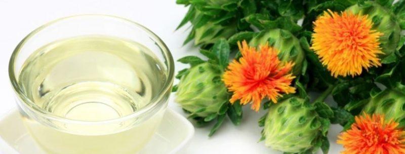 Veja seus benefícios e saiba como tomar óleo de cártamo para emagrecer