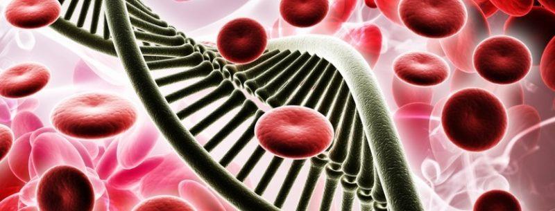 O que é anemia falciforme, quais seus sintomas e tratamentos